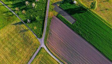 prawo rolne umowy adwokat prawnik ekologia prawnik umowa dzierżawy
